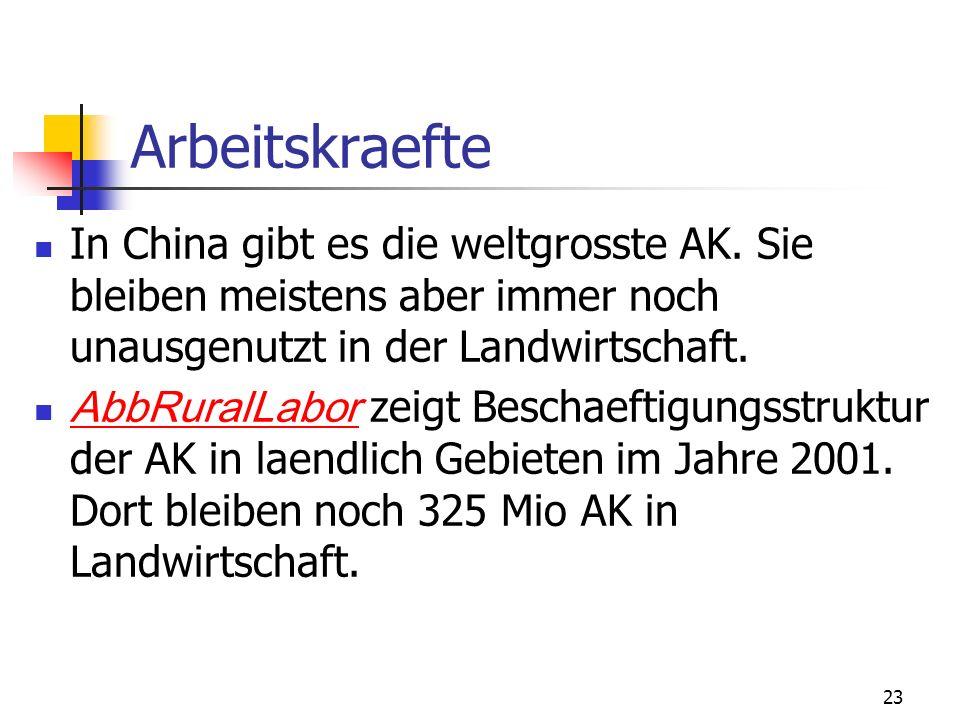 23 Arbeitskraefte In China gibt es die weltgrosste AK. Sie bleiben meistens aber immer noch unausgenutzt in der Landwirtschaft. AbbRuralLabor zeigt Be