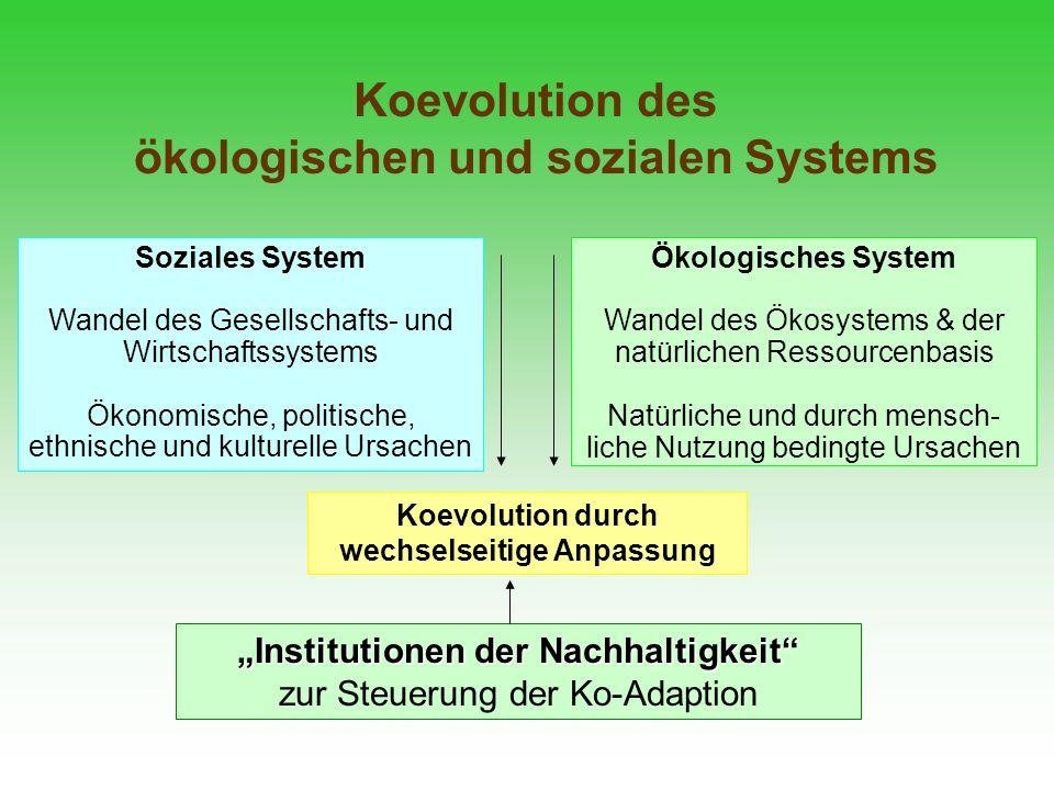 Koevolution des ökologischen und sozialen Systems Soziales System Wandel des Gesellschafts- und Wirtschaftssystems Ökonomische, politische, ethnische