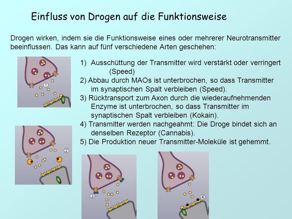 Einfluss von Drogen auf die Funktionsweise Drogen wirken, indem sie die Funktionsweise eines oder mehrerer Neurotransmitter beeinflussen. Das kann auf