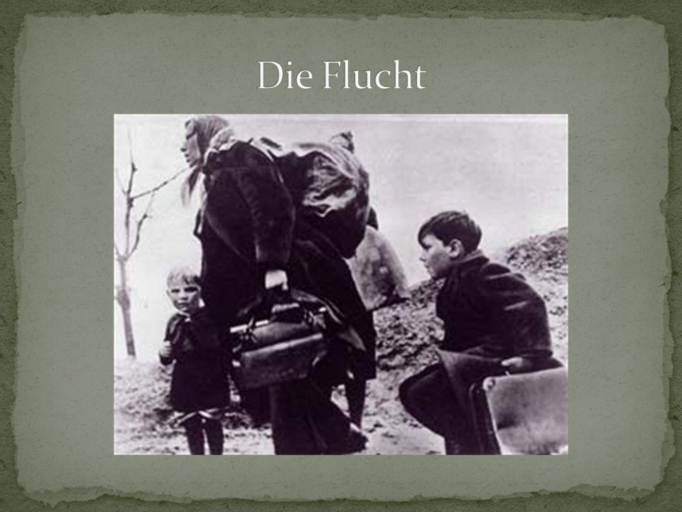 Flucht nach Ostpreußen bis nach Litauen 1945 flohen zahlreiche Deutsche aus dem nördlichen Ostpreußen vor der Roten Armee Weitere Zehntausende Deutsche wurden 1945 zur Zwangsarbeit in das Innere der UdSSR gebracht.