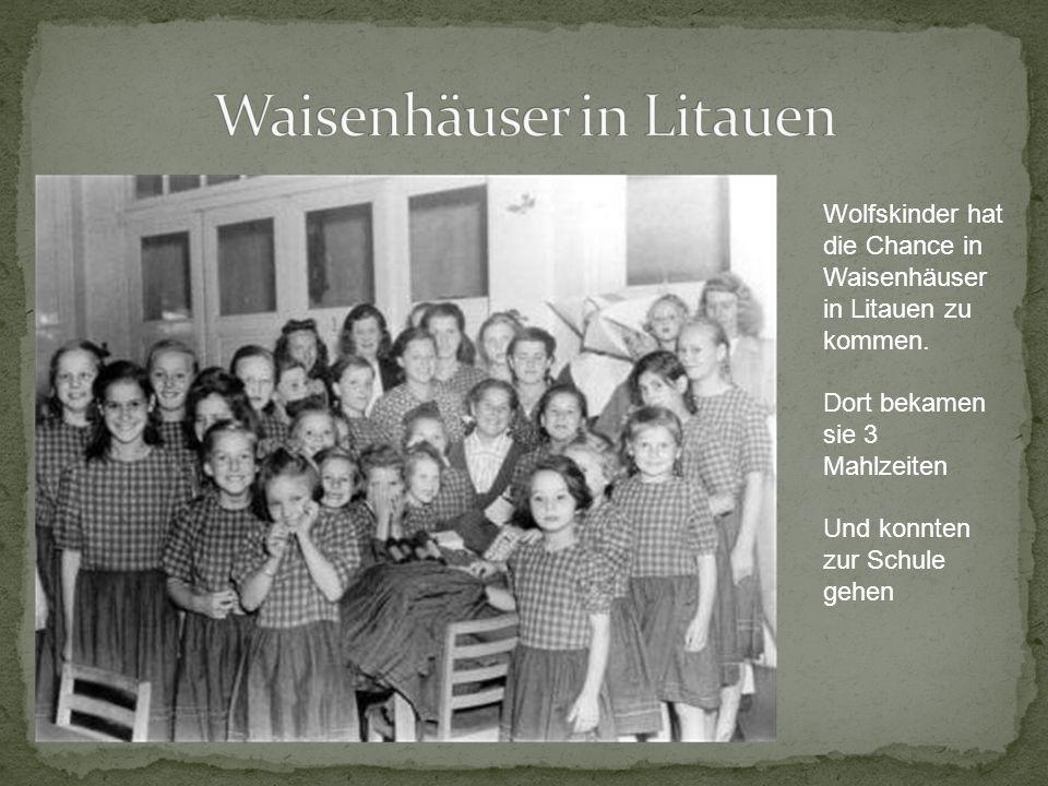 Wolfskinder hat die Chance in Waisenhäuser in Litauen zu kommen. Dort bekamen sie 3 Mahlzeiten Und konnten zur Schule gehen