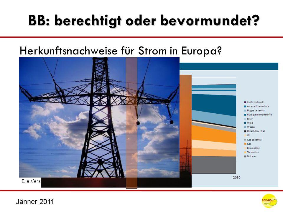 Jänner 2011 Stromkennzeichnung hinterfragt.Was ist das dann mit Grünem Öko Strom.
