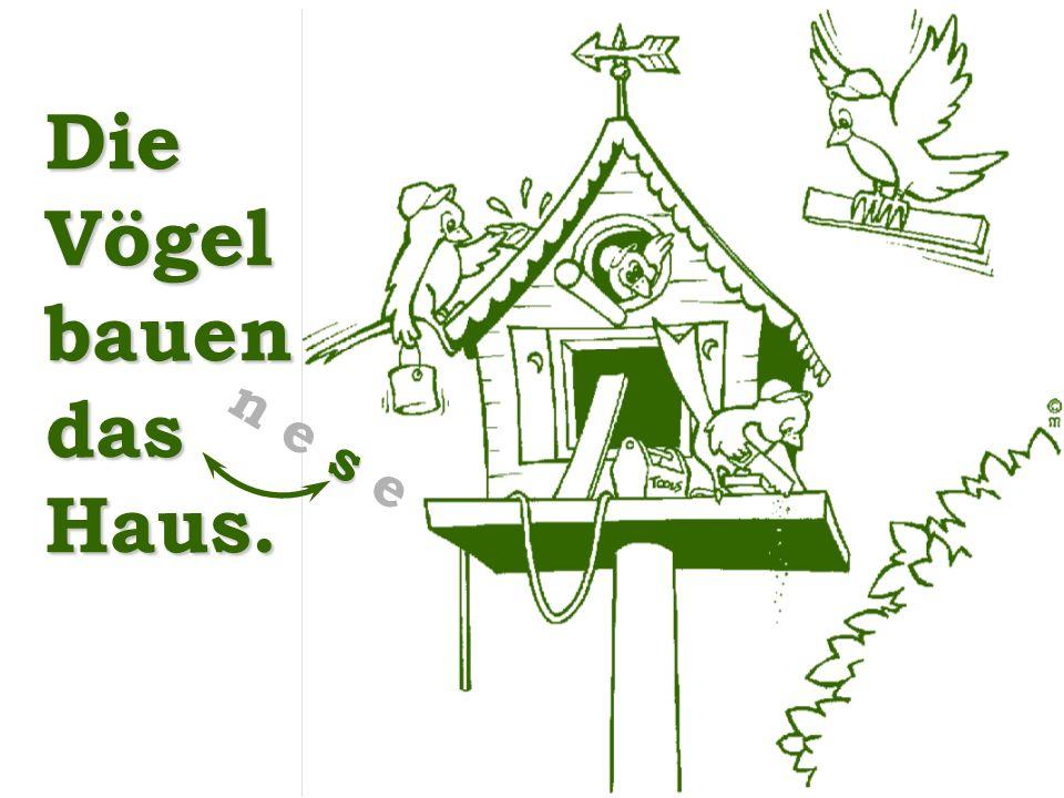 Die Vögel bauen das Haus. s n e s e