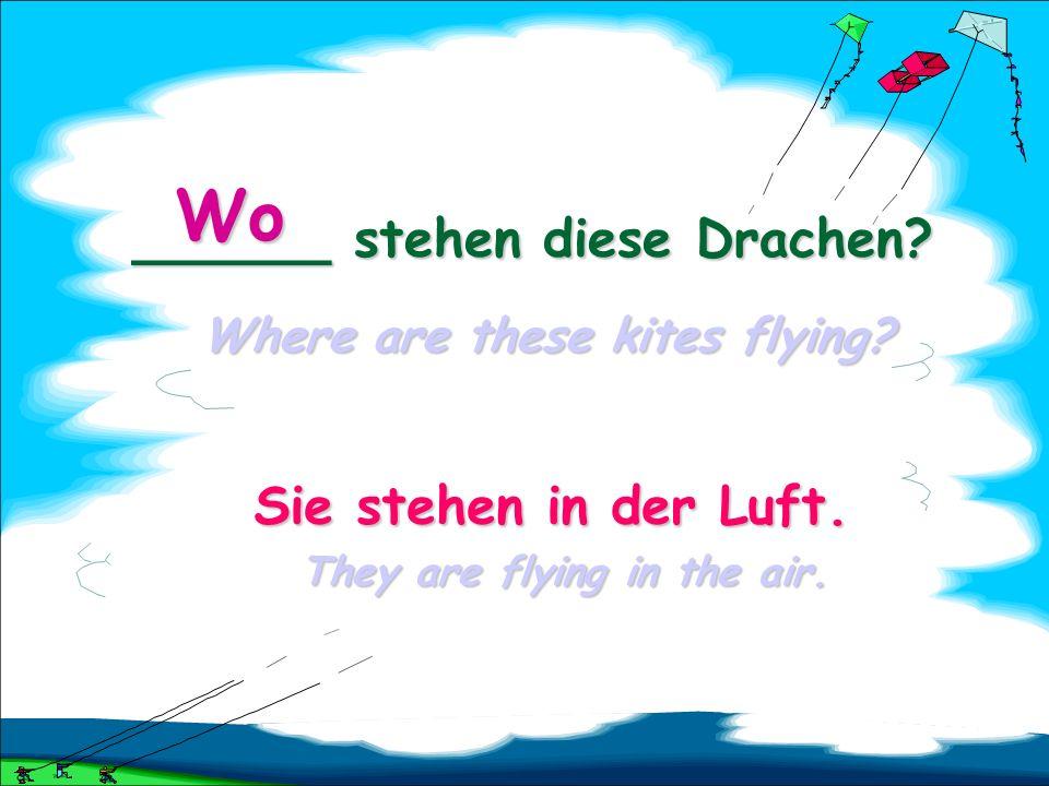 ______ stehen diese Drachen Where are these kites flying Wo Wohin Wo