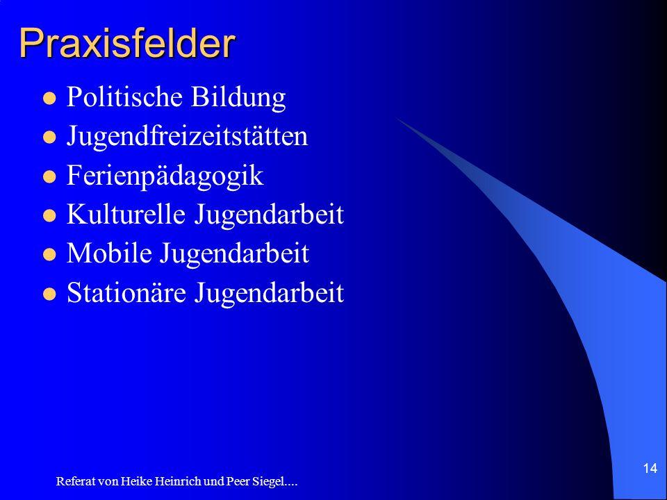 Referat von Heike Heinrich und Peer Siegel.... 14 Praxisfelder Politische Bildung Jugendfreizeitstätten Ferienpädagogik Kulturelle Jugendarbeit Mobile