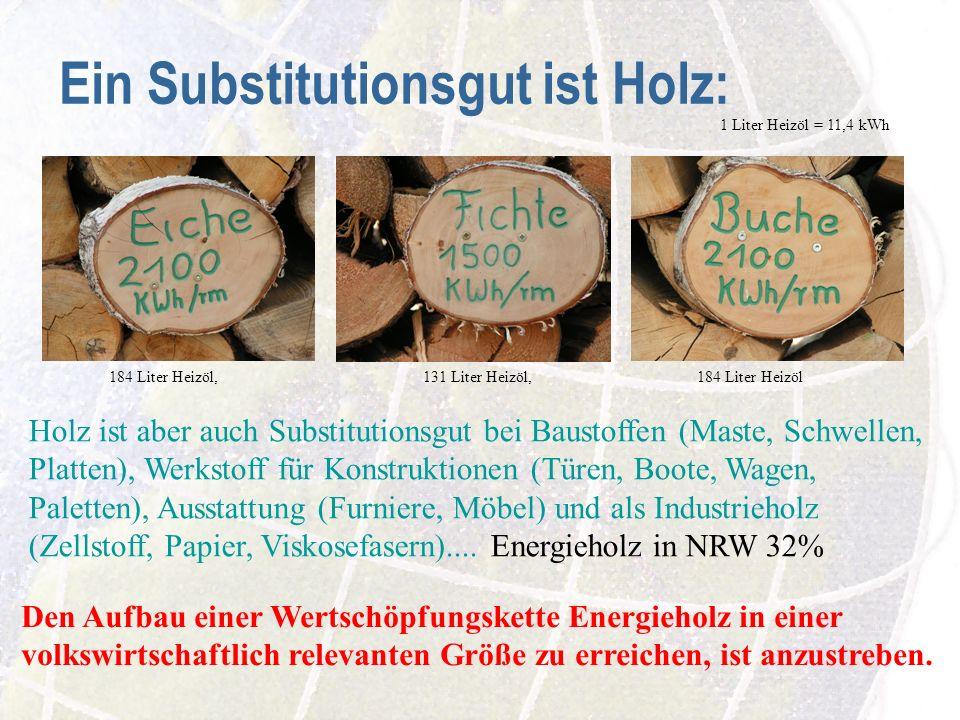 Ein Substitutionsgut ist Holz: Den Aufbau einer Wertschöpfungskette Energieholz in einer volkswirtschaftlich relevanten Größe zu erreichen, ist anzustreben.