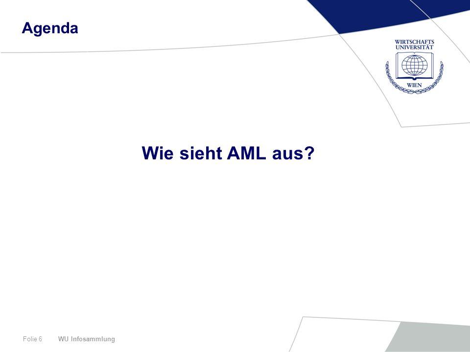 WU InfosammlungFolie 17 Agenda Zusammenfassung und Ausblick