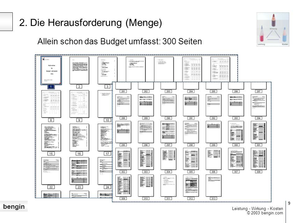 bengin 9 © 2003 bengin.com Leistung - Wirkung - Kosten Allein schon das Budget umfasst: 300 Seiten 2.