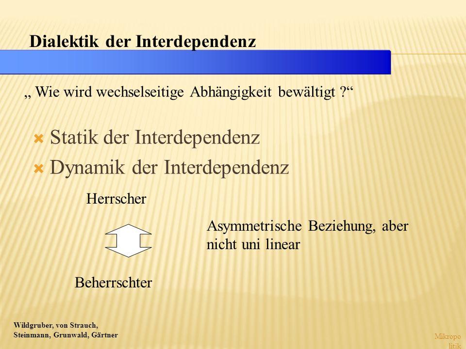 Wildgruber, von Strauch, Steinmann, Grunwald, Gärtner Statik der Interdependenz Dynamik der Interdependenz Mikropo litik Dialektik der Interdependenz