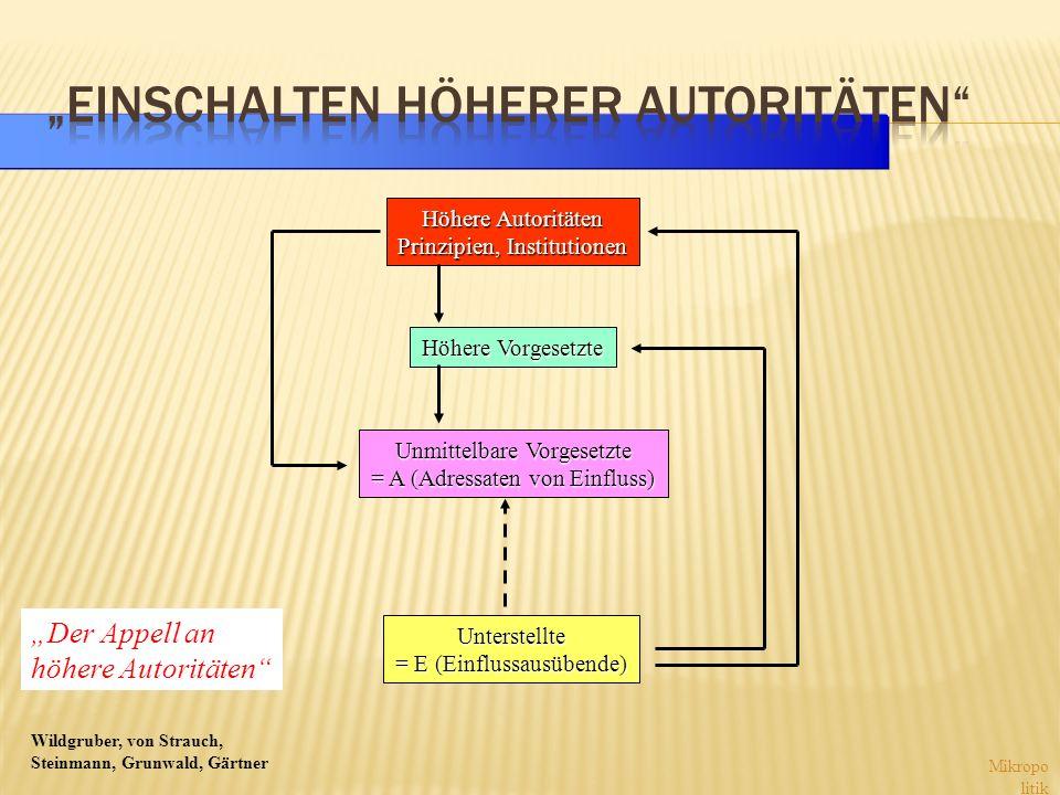 Wildgruber, von Strauch, Steinmann, Grunwald, Gärtner Mikropo litik Höhere Autoritäten Prinzipien, Institutionen Höhere Vorgesetzte Unmittelbare Vorge