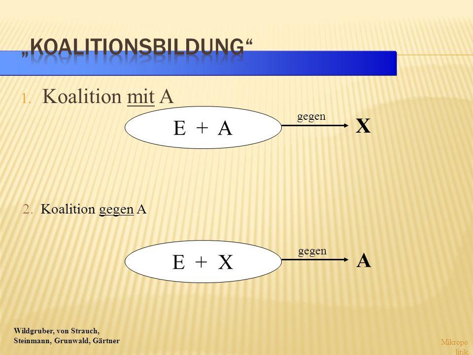 Wildgruber, von Strauch, Steinmann, Grunwald, Gärtner 1. Koalition mit A Mikropo litik E + A E + X X gegen A 2. Koalition gegen A