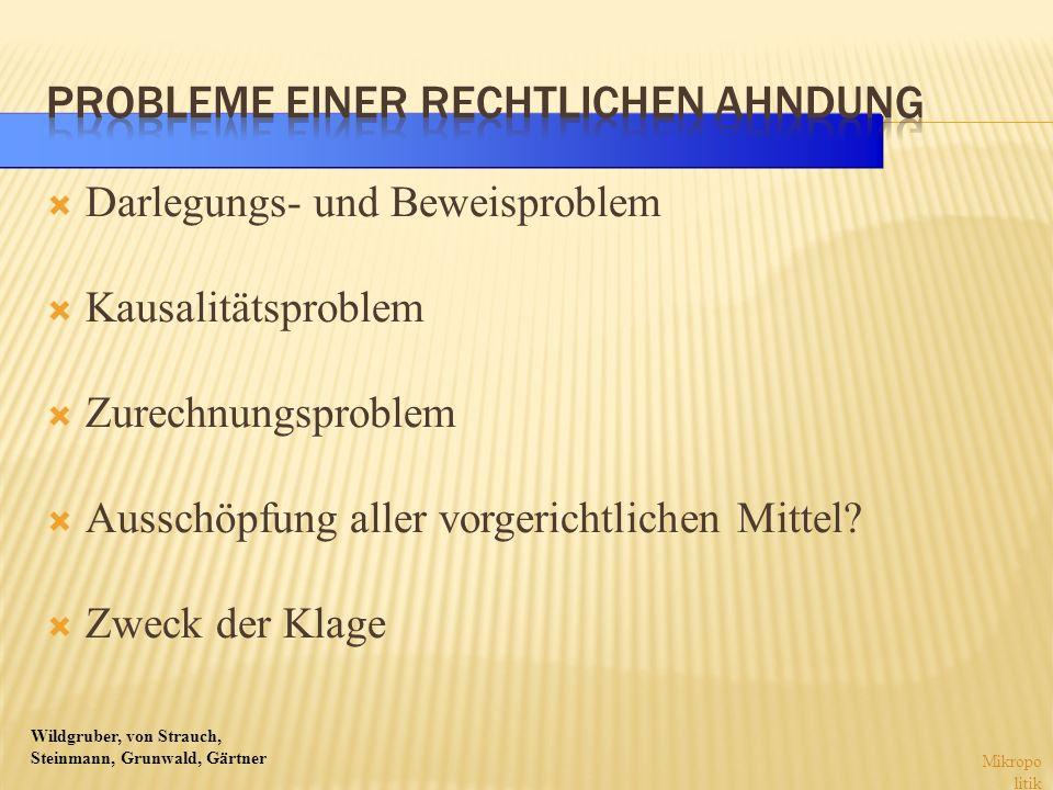 Wildgruber, von Strauch, Steinmann, Grunwald, Gärtner Darlegungs- und Beweisproblem Kausalitätsproblem Zurechnungsproblem Ausschöpfung aller vorgerich