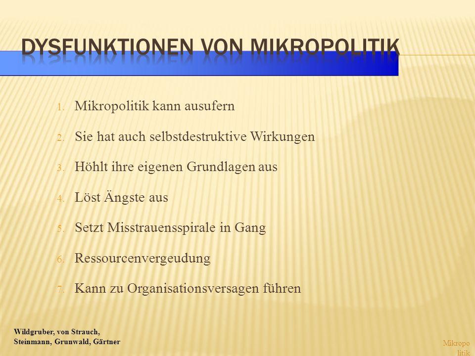 Wildgruber, von Strauch, Steinmann, Grunwald, Gärtner 1. Mikropolitik kann ausufern 2. Sie hat auch selbstdestruktive Wirkungen 3. Höhlt ihre eigenen