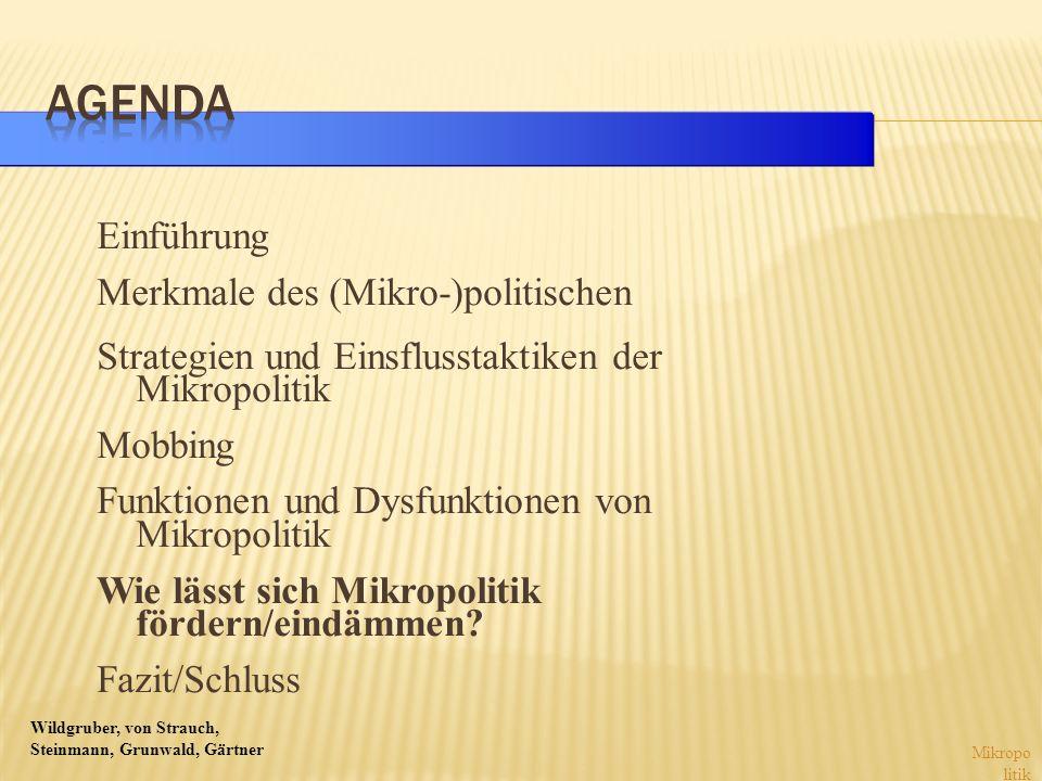 Wildgruber, von Strauch, Steinmann, Grunwald, Gärtner Einführung Merkmale des (Mikro-)politischen Strategien und Einsflusstaktiken der Mikropolitik Mo