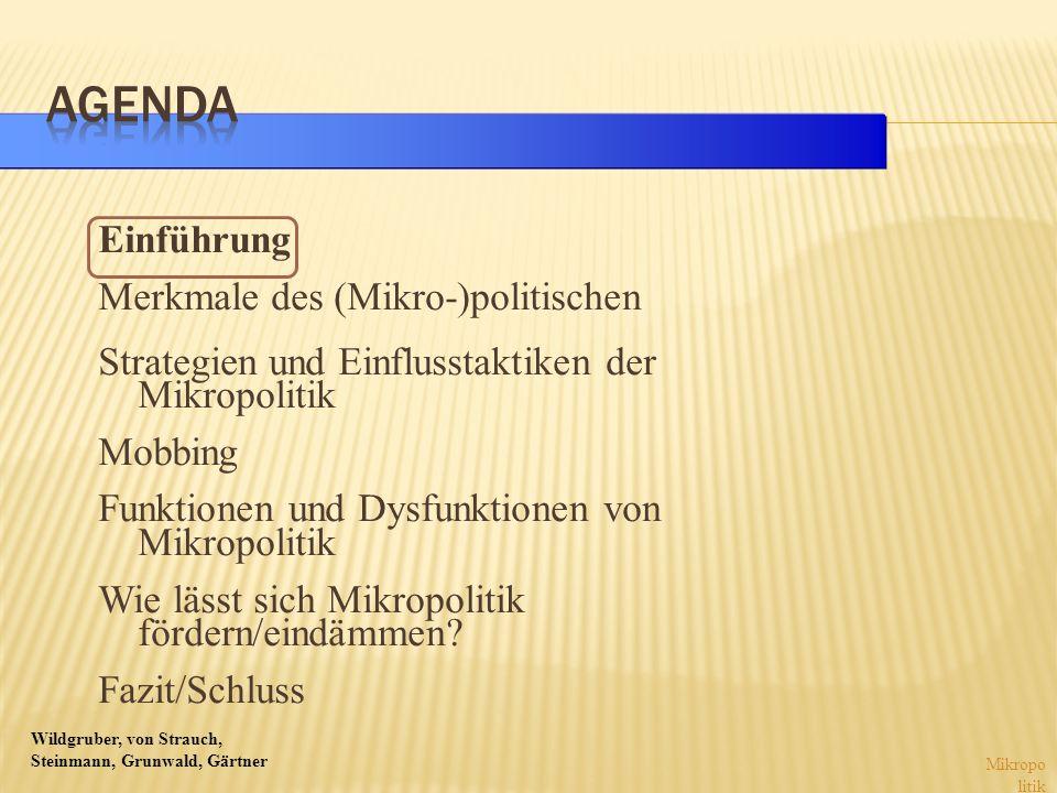 Wildgruber, von Strauch, Steinmann, Grunwald, Gärtner Akteurs- und Handlungsorien- tierung Intersubjektivität Interessen Macht Mikropo litik?!?.