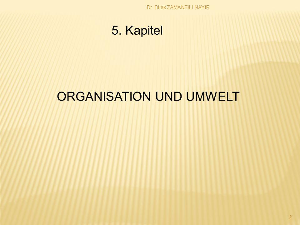 Dr. Dilek ZAMANTILI NAYIR 2 5. Kapitel ORGANISATION UND UMWELT