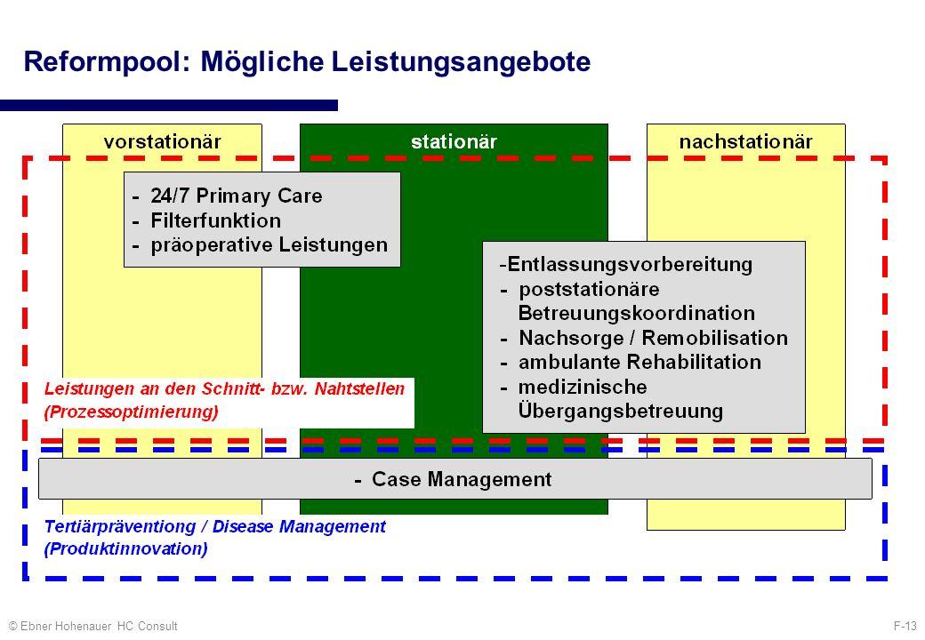 F-13© Ebner Hohenauer HC Consult Reformpool: Mögliche Leistungsangebote
