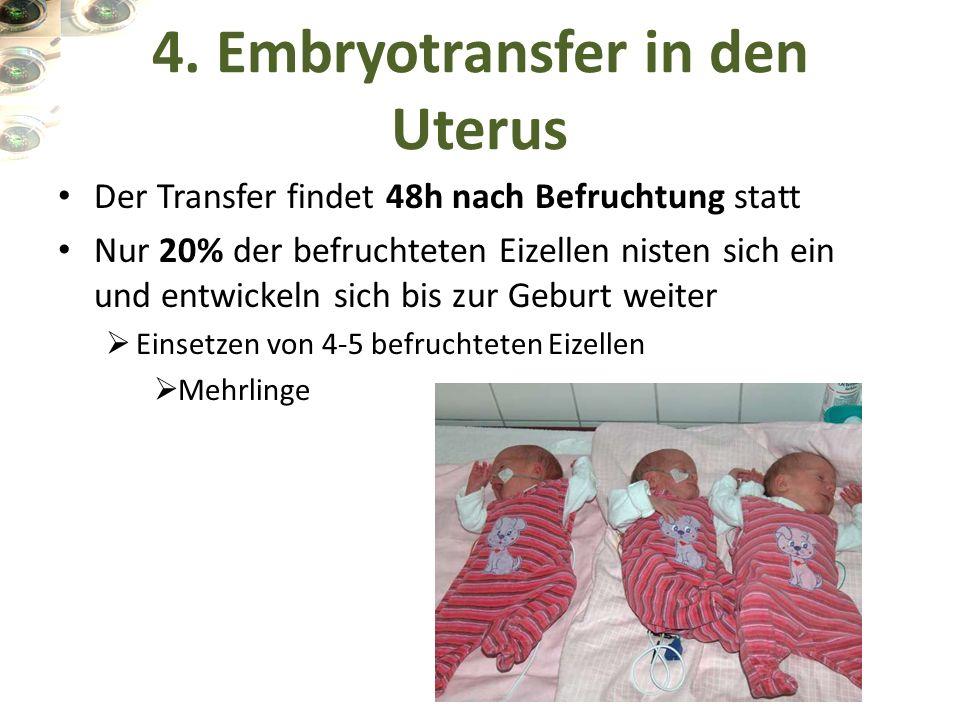 4. Embryotransfer in den Uterus Der Transfer findet 48h nach Befruchtung statt Nur 20% der befruchteten Eizellen nisten sich ein und entwickeln sich b