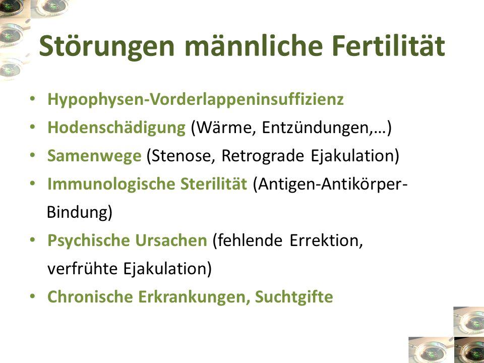 Störungen männliche Fertilität Hypophysen-Vorderlappeninsuffizienz Hodenschädigung (Wärme, Entzündungen,…) Samenwege (Stenose, Retrograde Ejakulation)