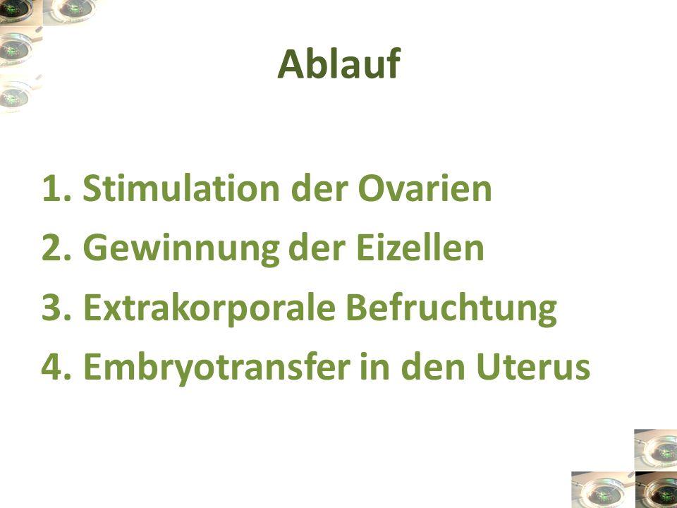 Ablauf 1. Stimulation der Ovarien 2. Gewinnung der Eizellen 3. Extrakorporale Befruchtung 4. Embryotransfer in den Uterus