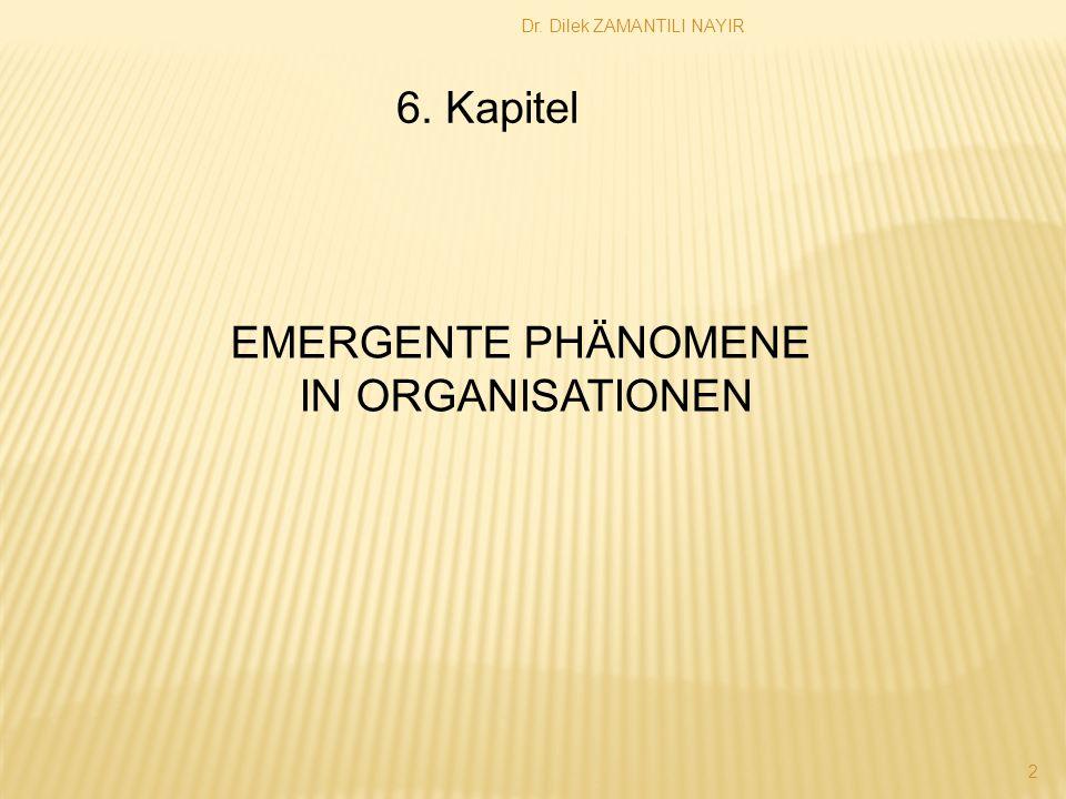 Dr. Dilek ZAMANTILI NAYIR 2 6. Kapitel EMERGENTE PHÄNOMENE IN ORGANISATIONEN