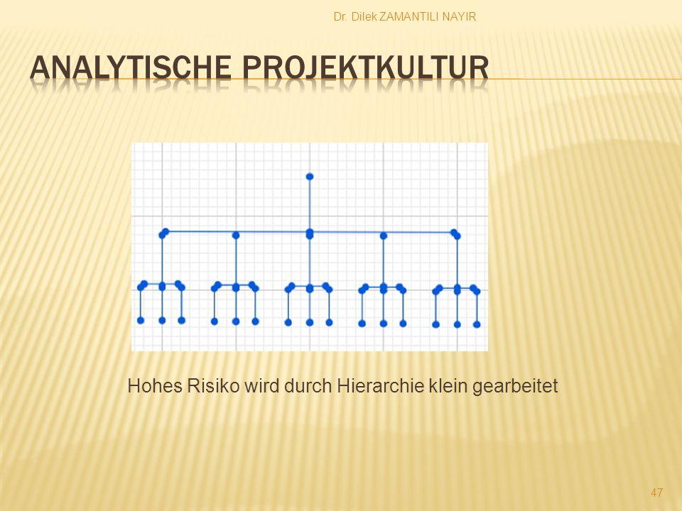 Dr. Dilek ZAMANTILI NAYIR 47 Hohes Risiko wird durch Hierarchie klein gearbeitet