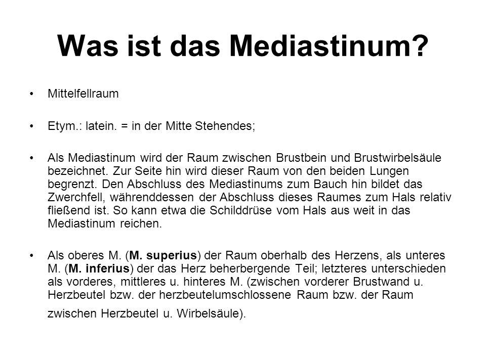 Was ist das Mediastinum? Mittelfellraum Etym.: latein. = in der Mitte Stehendes; Als Mediastinum wird der Raum zwischen Brustbein und Brustwirbelsäule