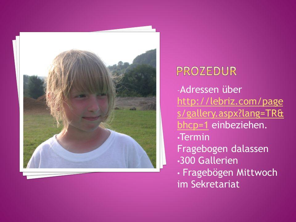 - Adressen über http://lebriz.com/page s/gallery.aspx lang=TR& bhcp=1 einbeziehen.