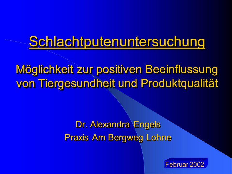 Schlachtputenuntersuchung Möglichkeit zur positiven Beeinflussung von Tiergesundheit und Produktqualität Dr. Alexandra Engels Praxis Am Bergweg Lohne