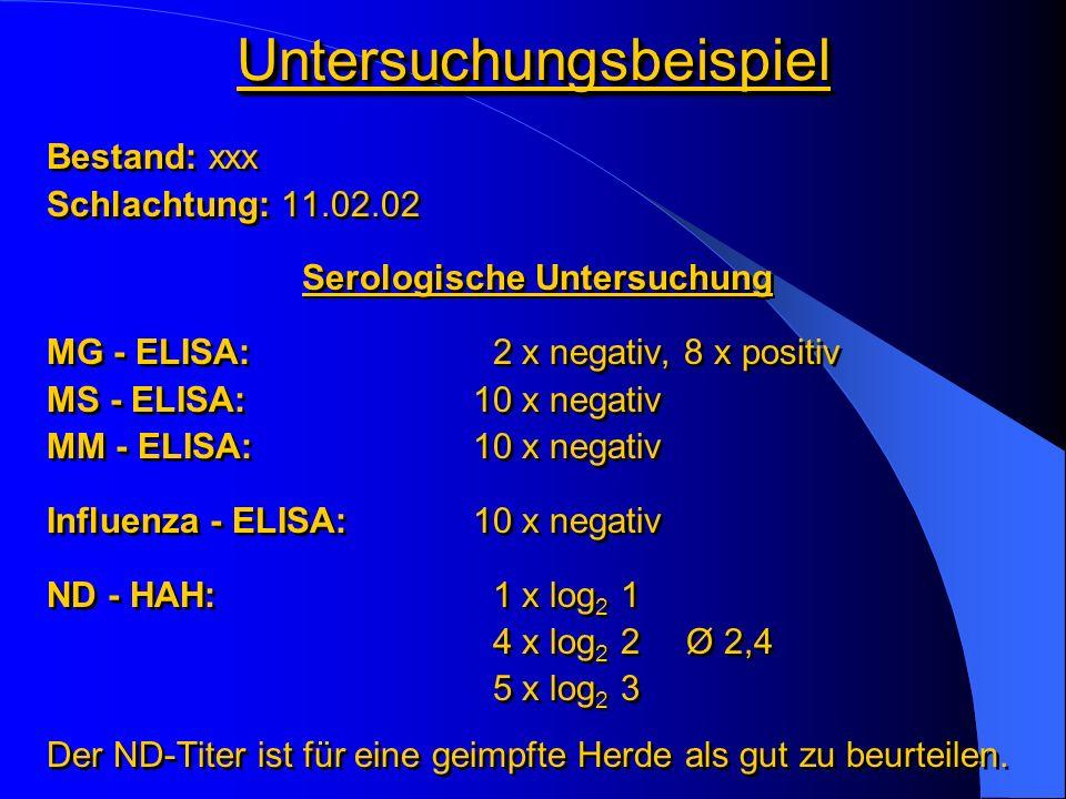 UntersuchungsbeispielUntersuchungsbeispiel Bestand: xxx Schlachtung: 11.02.02 Serologische Untersuchung MG - ELISA: 2 x negativ, 8 x positiv MS - ELIS