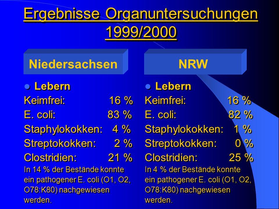 Ergebnisse Organuntersuchungen 1999/2000 Lebern Keimfrei: 16 % E. coli: 83 % Staphylokokken: 4 % Streptokokken: 2 % Clostridien: 21 % In 14 % der Best