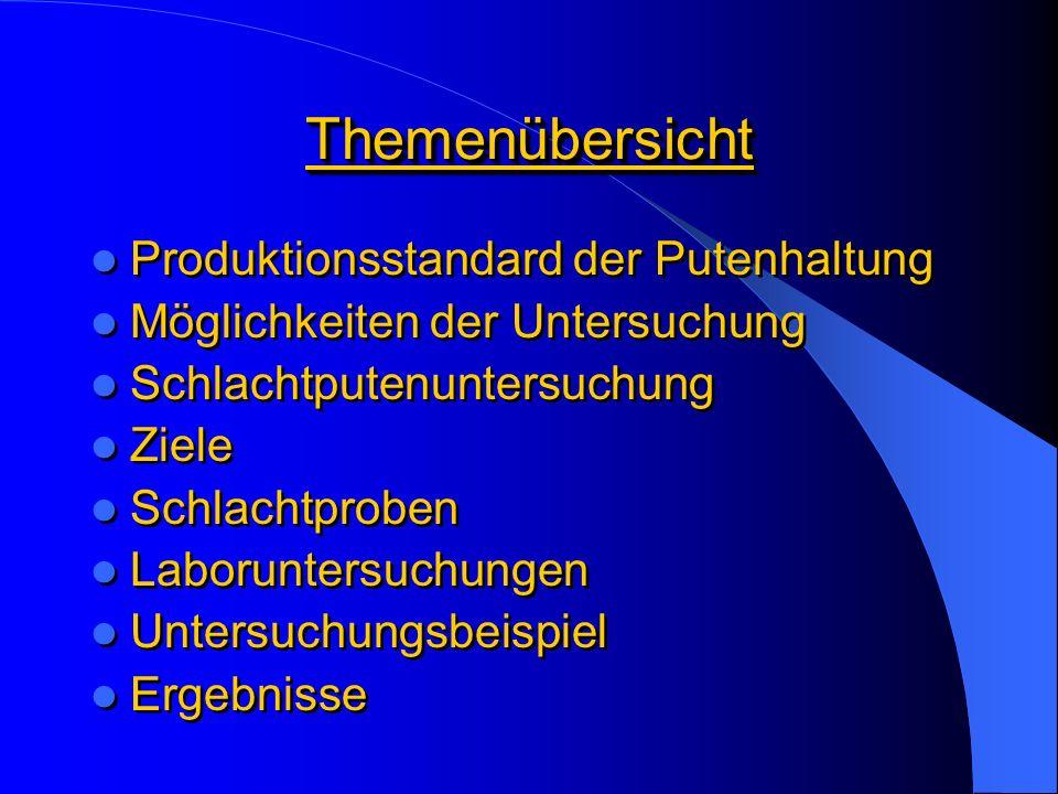 Deutsche Putenhaltung - Vorbild ohne Zukunft.