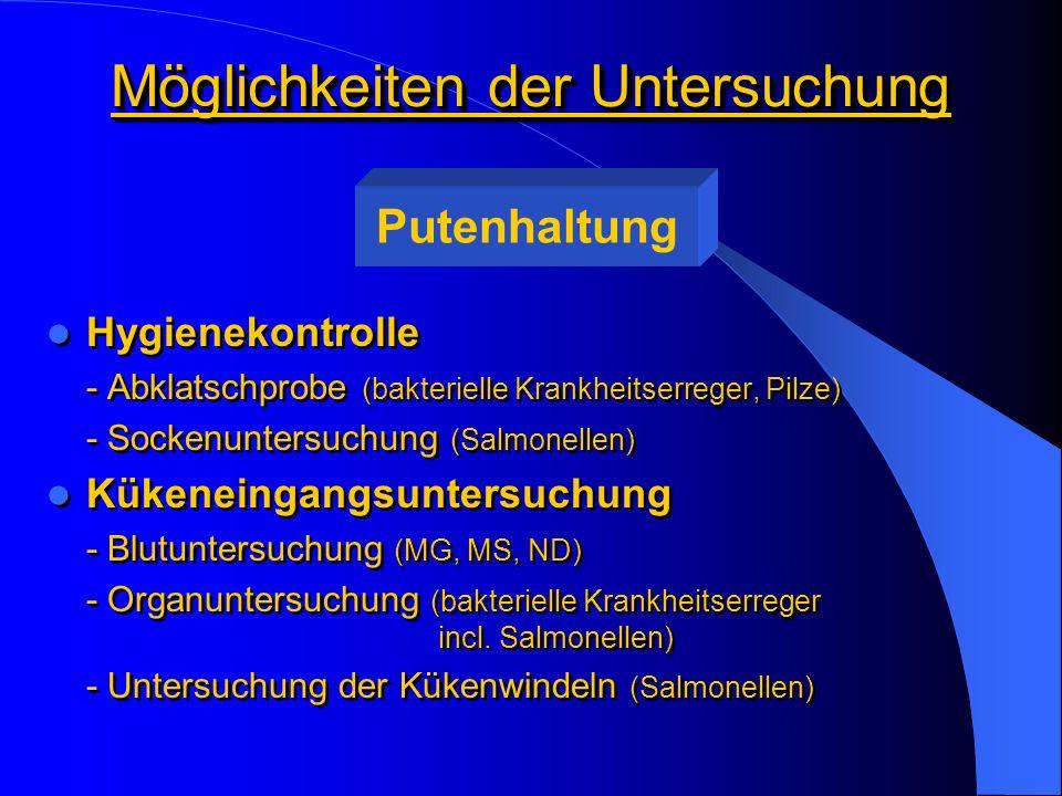 Möglichkeiten der Untersuchung Impfkontrolle - Titerbestimmung (ND, HE, TRT) Therapeutische Maßnahmen zur Diagnose von Krankheiten - Herdenkontrolle - Sektion (Blut -, Organ - oder Tupferentnahmen) - labordiagnostische Maßnahmen zur Feststellung von bakteriellen und viralen Krankheitserregern (Anzüchtung, SSA, ELISA etc.) Impfkontrolle - Titerbestimmung (ND, HE, TRT) Therapeutische Maßnahmen zur Diagnose von Krankheiten - Herdenkontrolle - Sektion (Blut -, Organ - oder Tupferentnahmen) - labordiagnostische Maßnahmen zur Feststellung von bakteriellen und viralen Krankheitserregern (Anzüchtung, SSA, ELISA etc.) Putenhaltung
