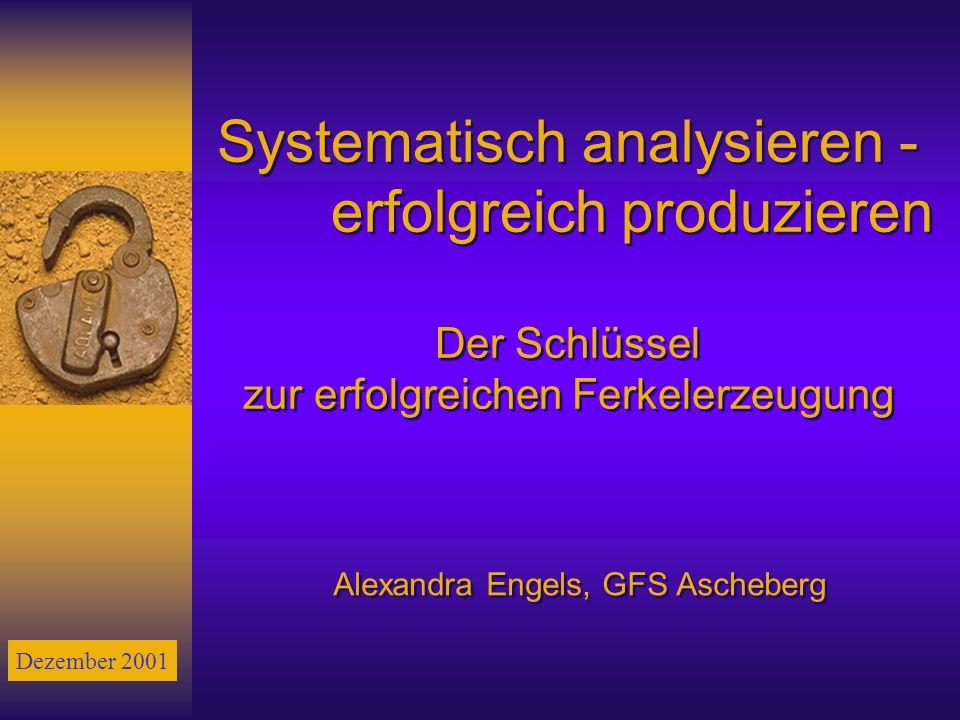 Systematisch analysieren - erfolgreich produzieren Der Schlüssel zur erfolgreichen Ferkelerzeugung Alexandra Engels, GFS Ascheberg Dezember 2001