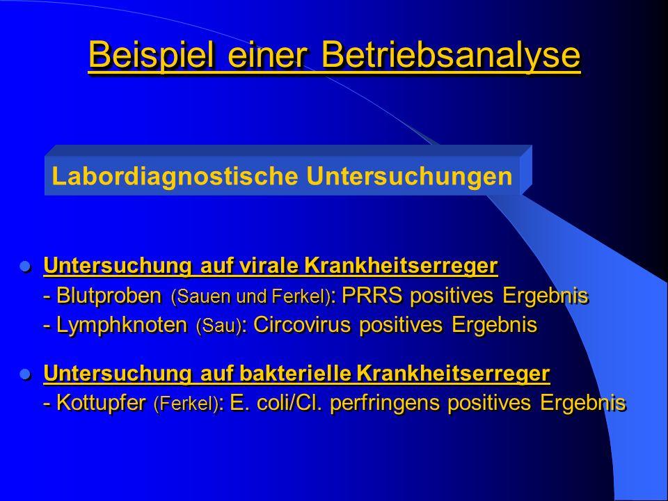 Beispiel einer Betriebsanalyse Untersuchung auf virale Krankheitserreger - Blutproben (Sauen und Ferkel) : PRRS positives Ergebnis - Lymphknoten (Sau) : Circovirus positives Ergebnis Untersuchung auf bakterielle Krankheitserreger - Kottupfer (Ferkel) : E.
