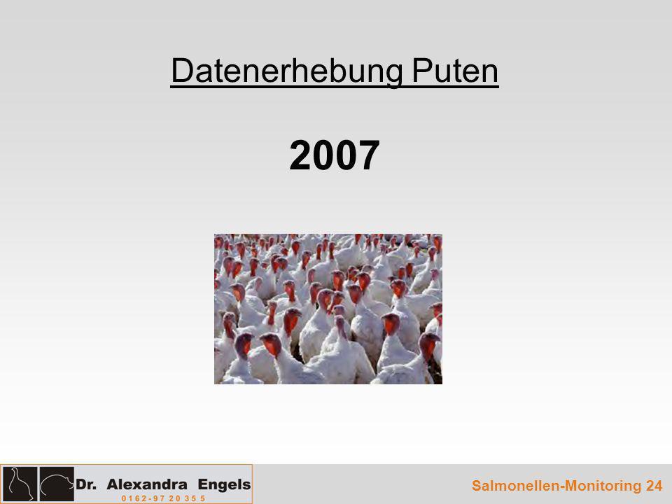 Datenerhebung Puten 2007 Salmonellen-Monitoring 24
