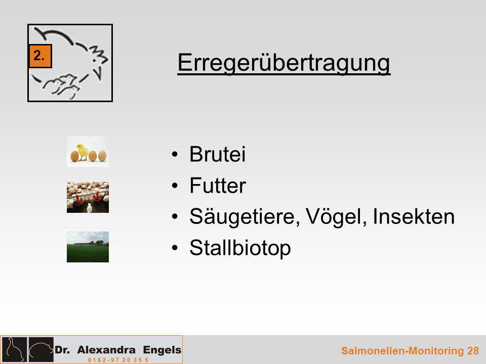 Brutei Futter Säugetiere, Vögel, Insekten Stallbiotop Erregerübertragung Salmonellen-Monitoring 28 2.