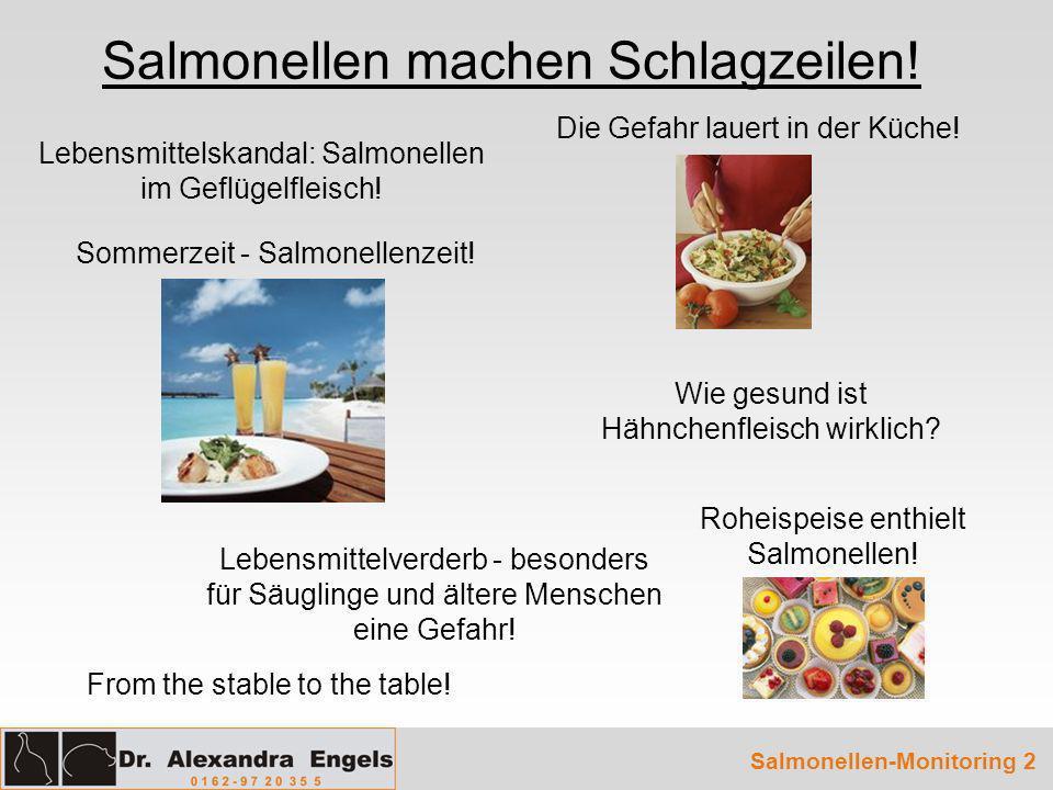 Salmonellen-Monitoring 33 Problemkreis II: Salmonelleninfektion stille Trägertiere Kontamination von Schlachtgeflügel und Geflügelfleischprodukten 7.