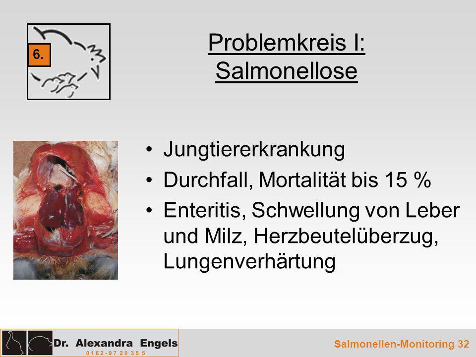 Salmonellen-Monitoring 32 Problemkreis I: Salmonellose Jungtiererkrankung Durchfall, Mortalität bis 15 % Enteritis, Schwellung von Leber und Milz, Her
