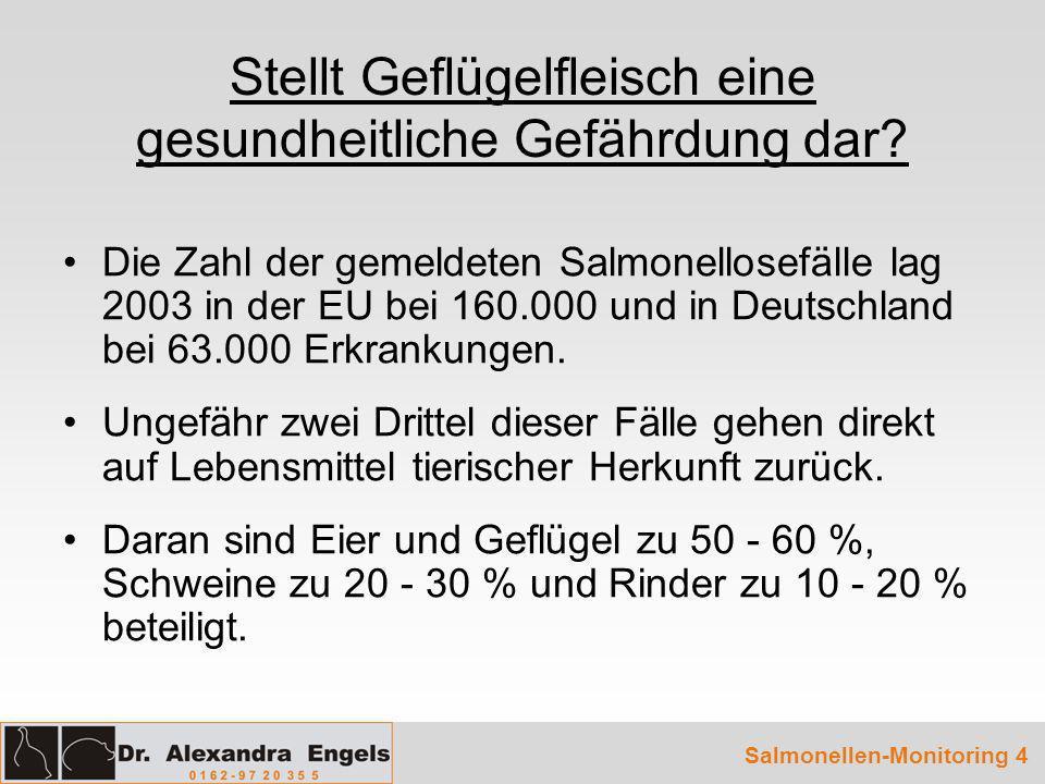 Salmonellosen beim Menschen 1991 - 2003 Quelle: Robert-Koch-Institut 2003 Salmonellen-Monitoring 5
