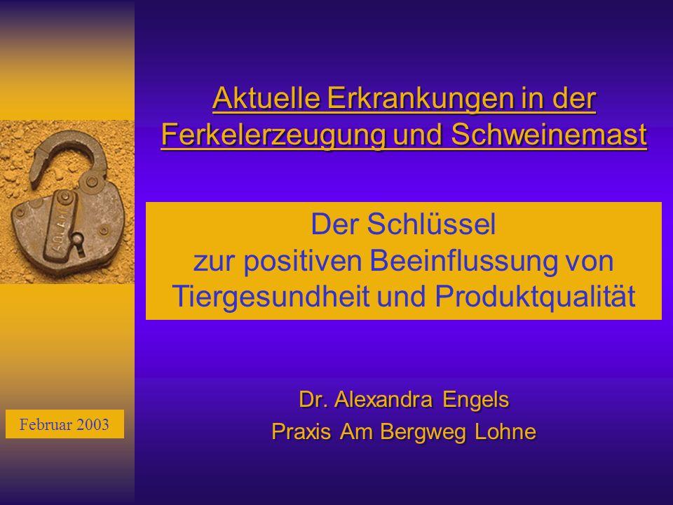 Aktuelle Erkrankungen in der Ferkelerzeugung und Schweinemast Dr. Alexandra Engels Praxis Am Bergweg Lohne Dr. Alexandra Engels Praxis Am Bergweg Lohn