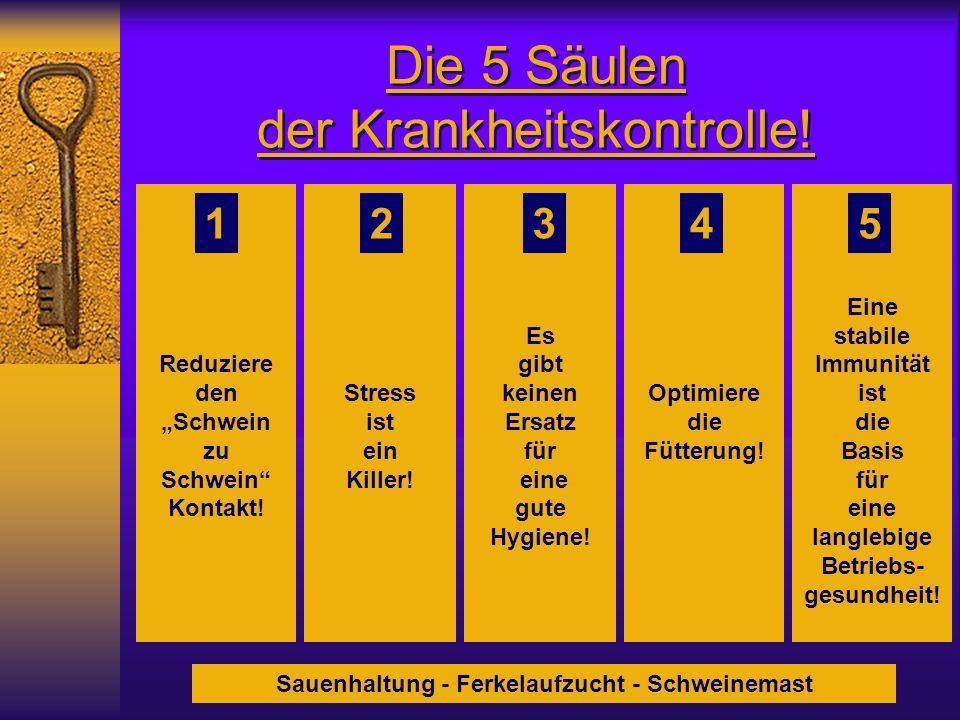Die 5 Säulen der Krankheitskontrolle! Reduziere den Schwein zu Schwein Kontakt! Stress ist ein Killer! Es gibt keinen Ersatz für eine gute Hygiene! Op