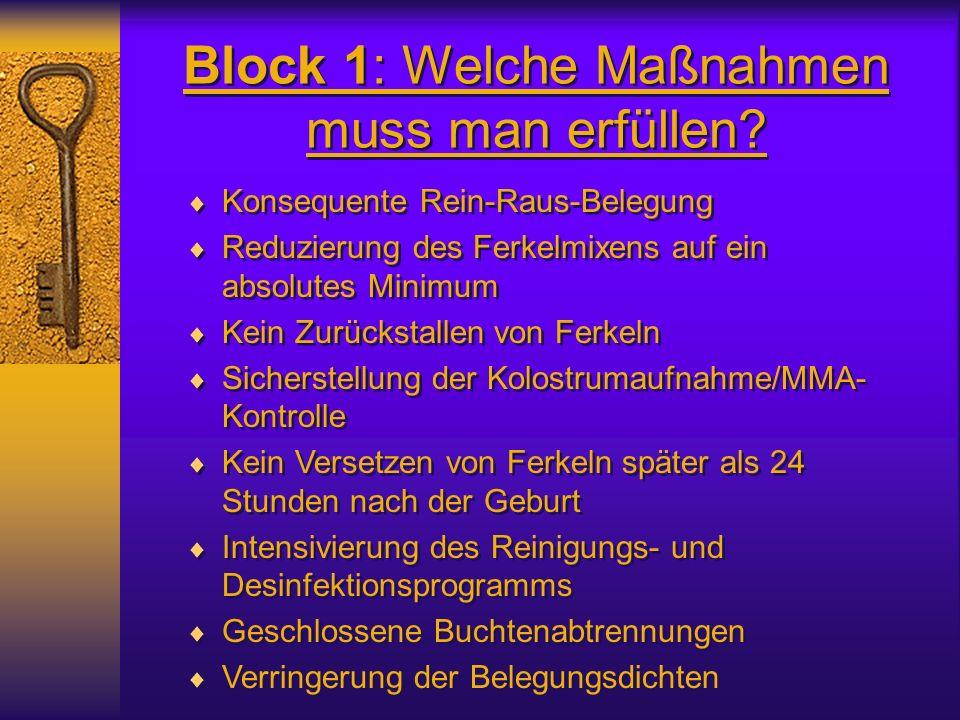 Block 1: Welche Maßnahmen muss man erfüllen? Konsequente Rein-Raus-Belegung Reduzierung des Ferkelmixens auf ein absolutes Minimum Kein Zurückstallen