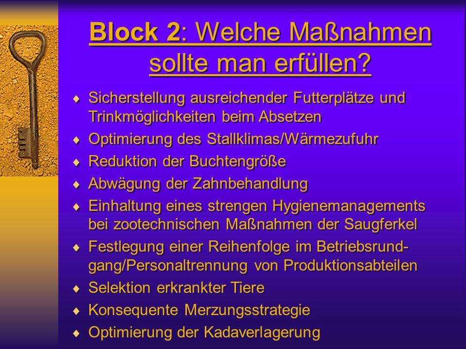 Block 2: Welche Maßnahmen sollte man erfüllen? Sicherstellung ausreichender Futterplätze und Trinkmöglichkeiten beim Absetzen Optimierung des Stallkli