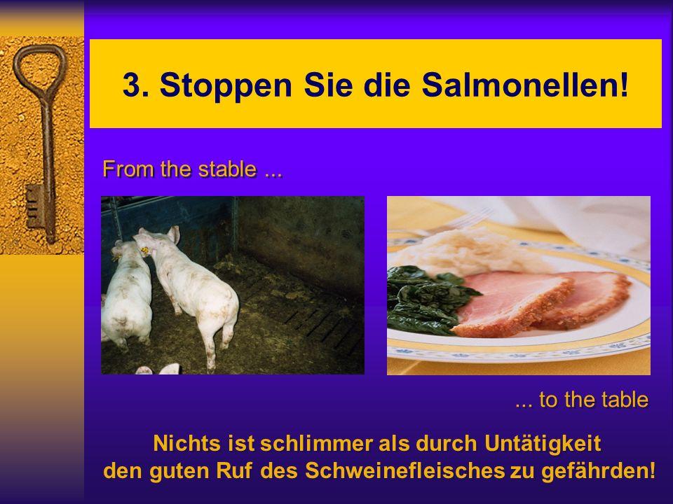 3. Stoppen Sie die Salmonellen! From the stable...... to the table Nichts ist schlimmer als durch Untätigkeit den guten Ruf des Schweinefleisches zu g