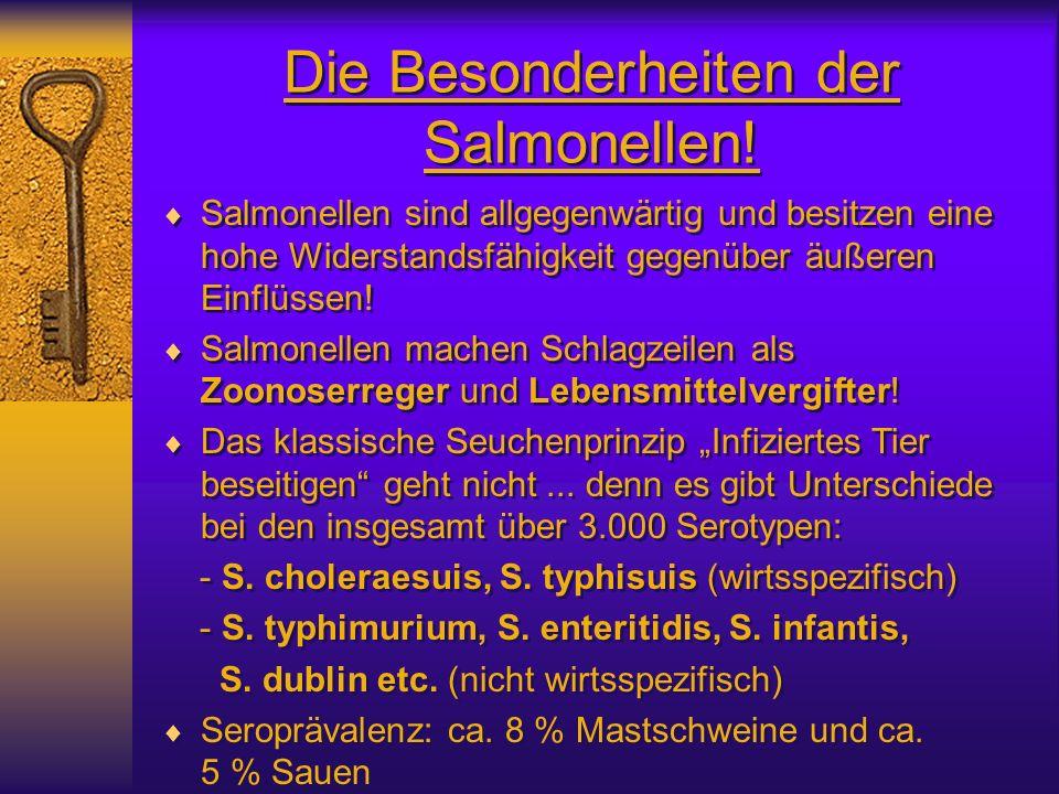 Die Besonderheiten der Salmonellen! Salmonellen sind allgegenwärtig und besitzen eine hohe Widerstandsfähigkeit gegenüber äußeren Einflüssen! Salmonel
