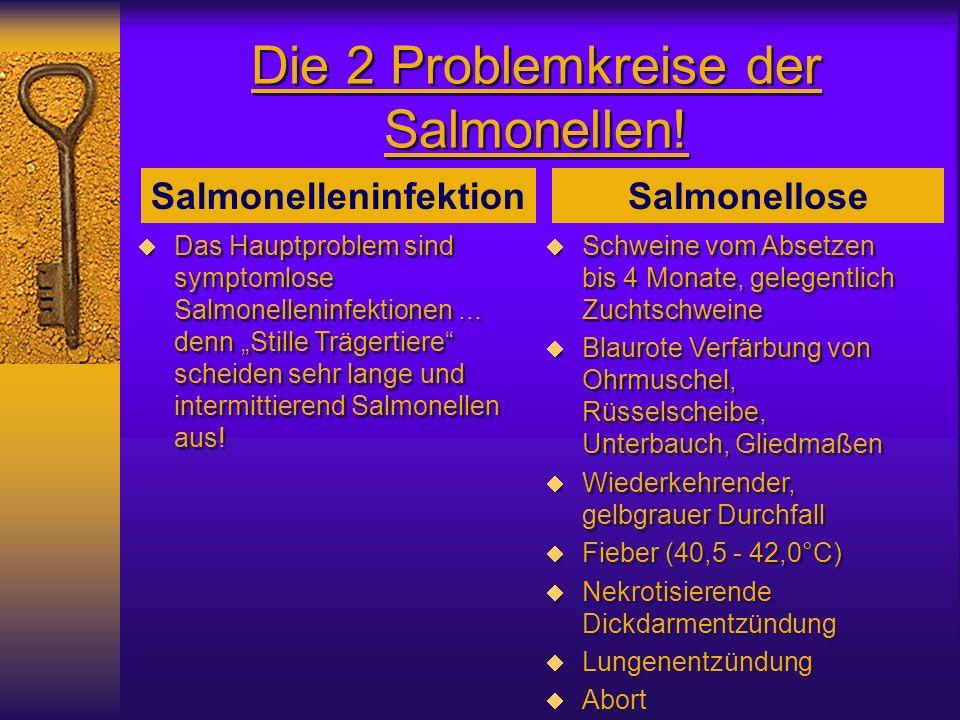 Die 2 Problemkreise der Salmonellen! Das Hauptproblem sind symptomlose Salmonelleninfektionen... denn Stille Trägertiere scheiden sehr lange und inter