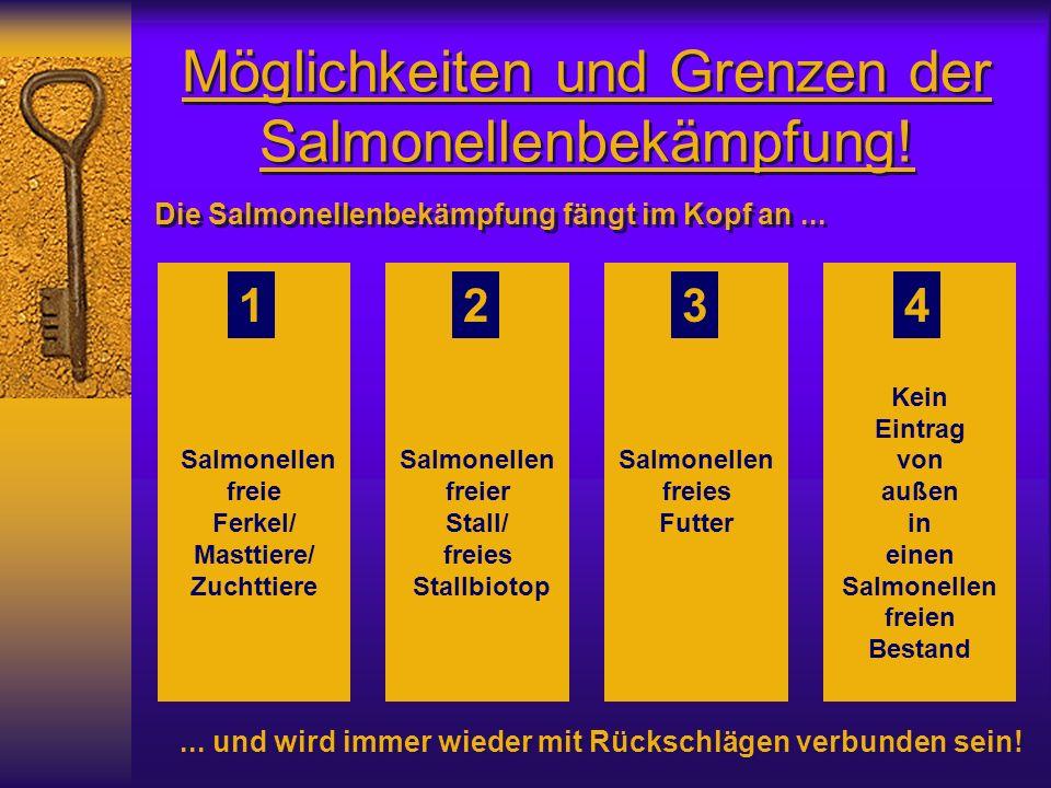 Möglichkeiten und Grenzen der Salmonellenbekämpfung! Salmonellen freie Ferkel/ Masttiere/ Zuchttiere Salmonellen freier Stall/ freies Stallbiotop Salm