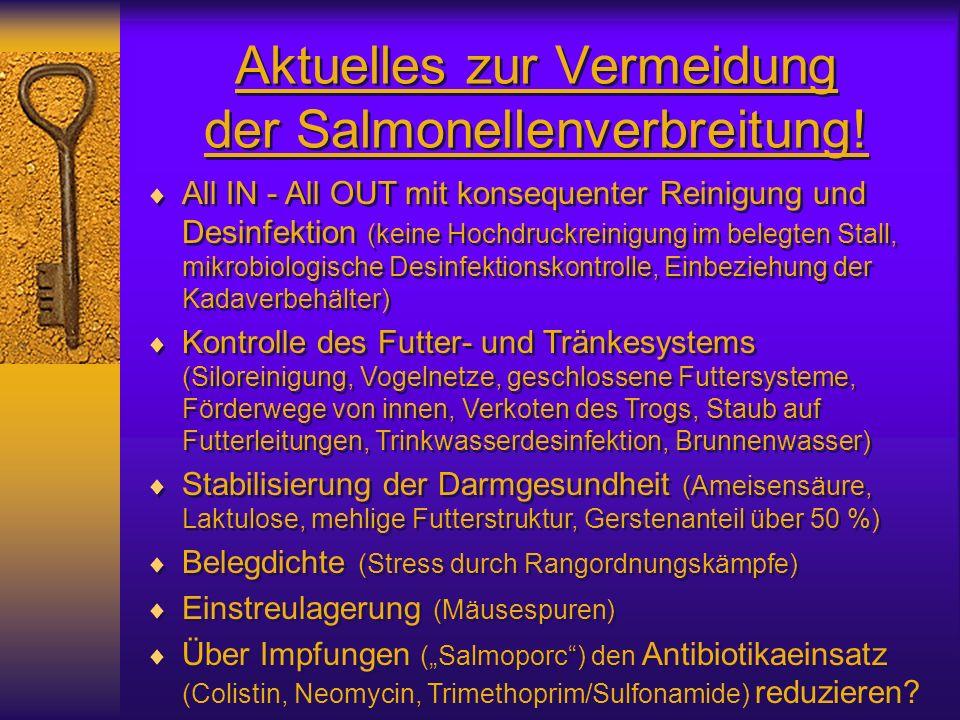 Aktuelles zur Vermeidung der Salmonellenverbreitung! All IN - All OUT mit konsequenter Reinigung und Desinfektion (keine Hochdruckreinigung im belegte