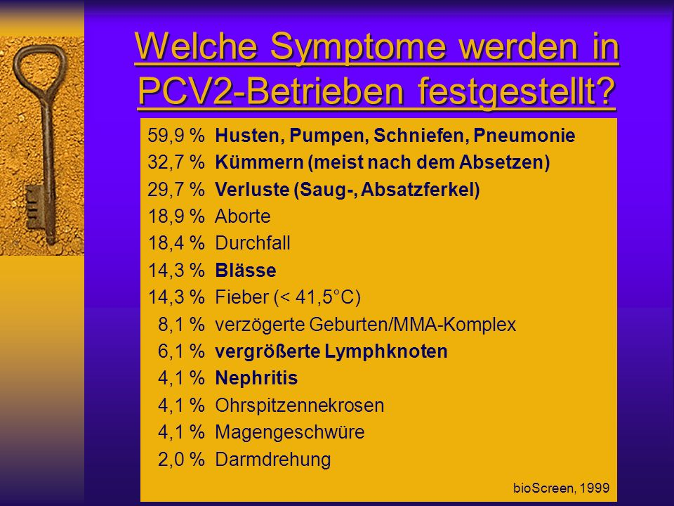Welche Symptome werden in PCV2-Betrieben festgestellt? 59,9 %Husten, Pumpen, Schniefen, Pneumonie 32,7 % Kümmern (meist nach dem Absetzen) 29,7 %Verlu